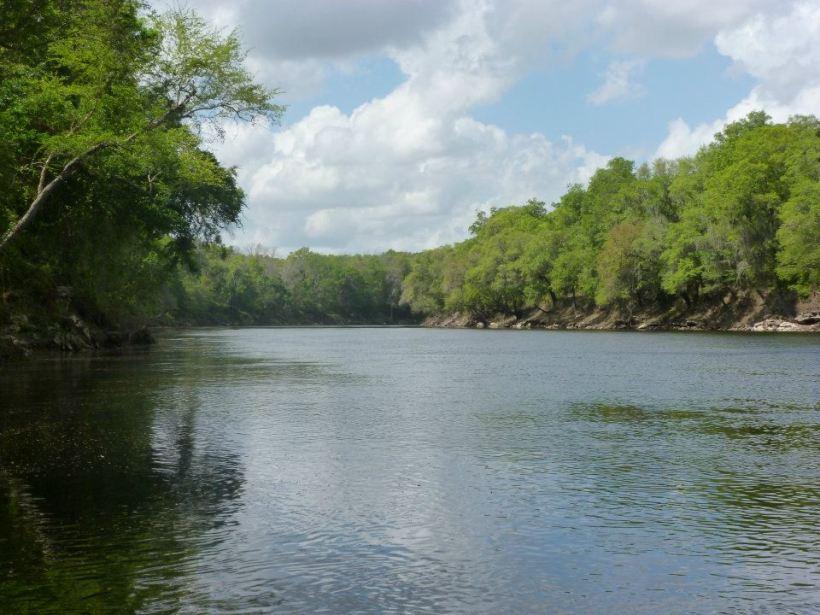 suwanee-river